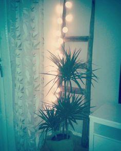Koti, valot, heinäseiväs, tikkaat