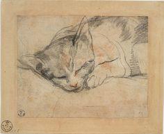 Federico Barocci (1535-1612). Study for a cat, Red and black chalk on paper, laid down, 11.5 x 14.6 cm   Gabinetto Disegni e Stampe degli Uffizi, Florence