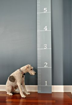 DIY Growth Chart Tutorial.  Would make a great shower gift.