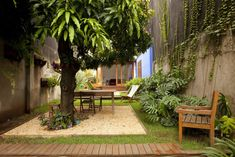 Jardim nos fundos da casa com projeto de reforma da arquiteta Ana Sawaia. Foram usadas grama esmeralda e amendoim, al�m de gard�nias e f�rmios. Junto ao anexo foi definido um espa�o para refei��es ao ar livre, sobre uma caixa revestida com pedriscos, � sombra da mangueira