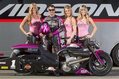 Harley Davidson V Rod, Harley Davidson Motorcycles, Drag Bike, Top Fuel, Harley Bikes, Car Humor, Drag Racing, Pink Leather, Motorbikes