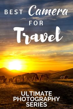 All you need to know about the best cameras for travel. Having a great travel camera is important so we have made a list of the best travel cameras on the market. #travelcamera #traveltips #travelphotography #backpackingtips