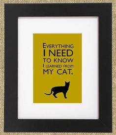 """""""Everything I need to know I learned from my cat."""""""