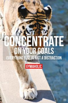 Concentrate on your goals. Everything else is just a DISTRACTION ! http://www.gymaholic.co