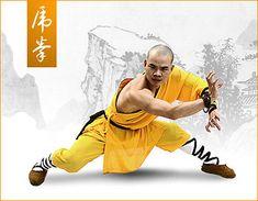 Tiger Style Kung Fu Shaolin xiu  shaolin <b>kung fu</b>