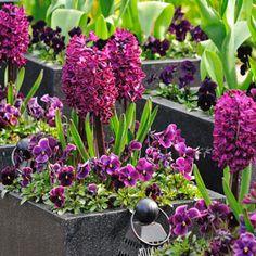 6 mises en scènes fleuries au jardin - Élégante terrasse en habit pourpre