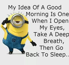 My idea of a good morning is one when i open my eyes take a deep breath then go back to sleep .....