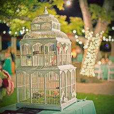 I want a beautiful, elegant birdcage with 2 little live birds, finches or canaries, on the guest book table
