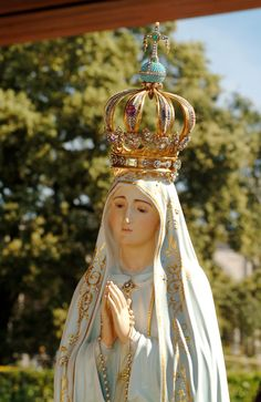 Our Lady of the Rosary of Fatima Lady Of Fatima, Holy Quotes, Blessed Virgin Mary, Blessed Mother, Mother Mary, Santa Maria, Our Lady, Social Platform, Beautiful Images