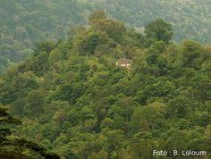 Parque Natural de Obô, São Tomé. São Tomé e Príncipe, Central Africa