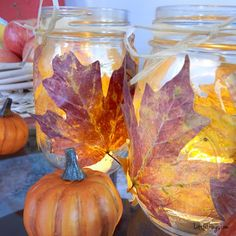DIY Autumn Mason Jar -- This is such a treat to bring the beauty of autumn inside!