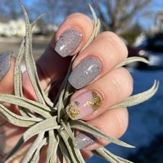 """Sara Bennett on Instagram: """"This length is probably my favorite 😻 If this mani had a name it'd be Hoping for Spring! Colors: @sparkle.and.co Earl Gray All Day and…"""" Earl Gray, Diy Manicure, Spring Colors, Sparkle, Instagram"""