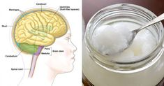 IMMEDIATELY IMPROVE BRAIN FUNCTION BY TAKING 2.7 TABLESPOONS OF COCONUT OIL