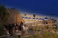 St George Island Florida Restaurants | Blue Parrot Restaurant, St George Island, FL | Flickr - Photo Sharing!