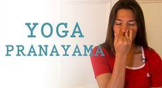 Delphine Bourdet,   sophrologue et professeur de yoga à Paris, vous initie au Pranayama, des techniques de respiration issues du yoga. En sanskrit, Prana veut dire : souffle, énergie vitale et yama: contrôle. Le pranayama c'est retrouver l'énergie par la respiration. Les techniques de pranayama sont très intéressantes pour harmoniser le corps et vous apaiser.