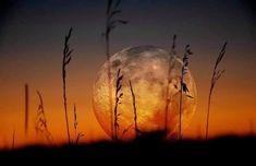 Land Art, Images Wallpaper, Wallpaper Backgrounds, Desktop Wallpapers, Sunset Wallpaper, Landscape Wallpaper, Nature Sauvage, Image Nature, Beautiful Moon