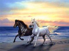 diamond mosaic Picture - More Detailed Picture about Needlework full drill diamond embroidery horses running cross stitch diy diamond mosaic animals crystal Rubik's cube rhinestones Picture in Diamond Painting Cross Stitch from Yumeart Factory Store Painted Horses, Diamond Drawing, 5d Diamond Painting, Horse Pictures, Animal Pictures, Mosaic Animals, Running On The Beach, Running Horses, Tier Fotos