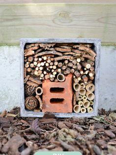 Lieveheersbeestjes, mieren, vlinders, bijen, duizendpoten, oorwurmen en ja zelfs pissebedden verdienen onze liefde en een leuk onderkomen. Zet je helm op, trek je veiligheidsschoenen aan, scherp je potlood en teken en bouw een droomhotel voor deze leuke kriebelbeestjes. Wat heb je nodig? Houten...