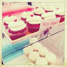 Cupcakeland Bakery
