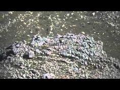 Jeb Corliss Crash Table Mountain South Africa