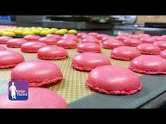 Croissant parigino e Pain au chocolat bicolore, Viennoiserie ricetta - YouTube