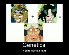 ... One piece: Usopp heredity meme  pointing this out its revled his dad dyes and staightend his hair in episode 0. Also looks a lot more like him in it