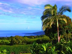 Kealakekua Bay, Big Island of Hawaiʻi. Beautiful place to snorkel.