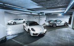 Porsche Trio (Panamera GTS Boxster GTS 911 GT3RS) [1131x706]