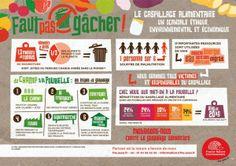 Le gaspillage alimentaire : un scandale éthique, environnemental et économique