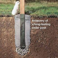 How to Set Fence Posts That Won't Rot. #HTL #landscaping #fencepostinstallation