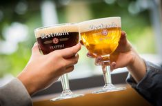De biertypes dubbel en tripel Pub Design, Belgian Beer, Modern Crafts, Beverages, Drinks, Cocktail, On Set, Pint Glass, Craft Beer
