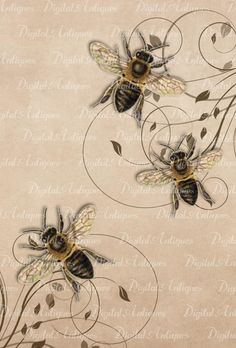 Vintage Bees Printable Images Digital Download by DigitalAntiques