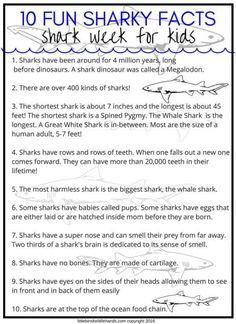 Shark Activities For Preschoolers and Beyond! – Indika Bray Shark Activities For Preschoolers and Beyond! Fun Shark facts For kids Shark Facts For Kids, Fun Facts About Sharks, All About Sharks, Sharks For Kids, Kids Facts, Animal Facts For Kids, Facts About Fish, Shark Activities, Preschool Activities