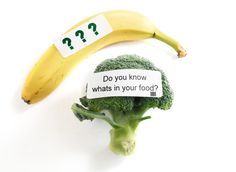 """Share this on WhatsAppAccording to a recent poll conducted by The Mellman Group, 9 out of 10 (or 91 percent of) Americans support mandatory labeling of foods containing genetically modified organisms — """"Frankenfoods,"""" as some people in the food revolution movement often call them. This preference for GMO labeling has been supported by eight other […]"""
