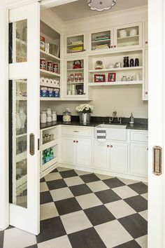 Organized Walk-in Pantry with a sink
