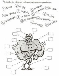 Español Lengua Extranjera: El cuerpo humano (1): Ejercicio // Sacado de Tapas de juego