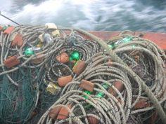 lights 123489: 5000 lumens stinger led green night fishing light, Reel Combo