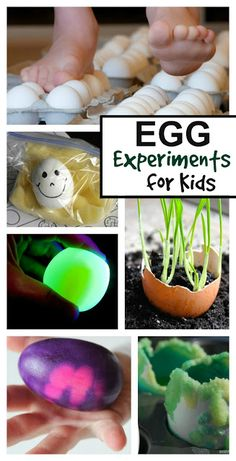 Amazing egg experiments for kids