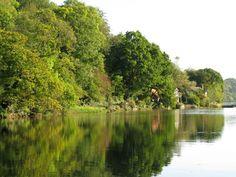 Dittisham Creek, south England!