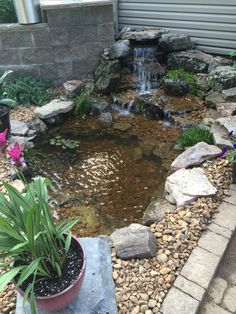 This small Water Garden fit perfectly into this patio area. It's totally transformed now! Diy Patio, Patio Ideas, Yard Ideas, Outdoor Ideas, Bog Garden, Dream Garden, Small Water Gardens, Patio Fountain, Deck Planters