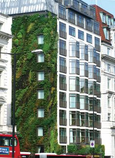 Vertical Gardening—London's Athenaeum Hotel near Hyde Park features a living wall designed by Patrick Blanc.