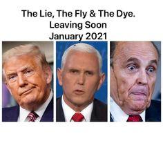 Political Opinion, Politics, Criminal Justice, Memories, Humor, Shit Happens, Twitter, Funny, Lincoln