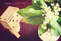 . happy labor day . {P52} #17 Danbo