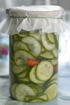 Disse råsyltede agurker er Kristina Miechels' nyfortolkning af en Kirsten Hüttemeier-klassiker Preserves, Pickles, Cucumber, Meal Prep, Bacon, Zucchini, Frozen, Food And Drink, Appetizers