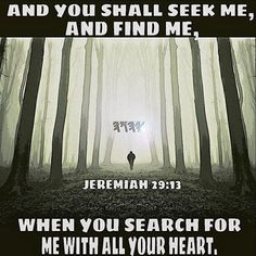Seek and you shall find, knock and it shall be opened to you. (Matthew 7:7)…