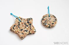 Cookie cutter bird feeders simple enough for kids to make