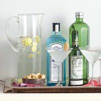 And of course we would enlist JOHN for the making of the drinks! Cant get any better than that!!  Gin Gingertinis | http://www.rachaelraymag.com/Recipes/rachael-ray-magazine-recipe-search/drink-cocktail-recipes/gin-gingertinis