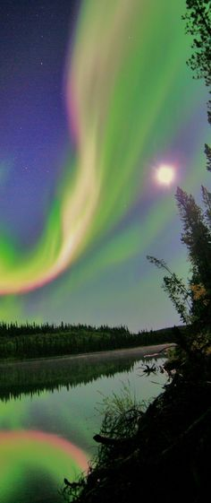 Aurora Borealis  you only have to see one to fall in love with them.