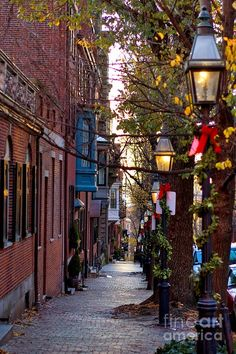 Christmas street lights | fine art america
