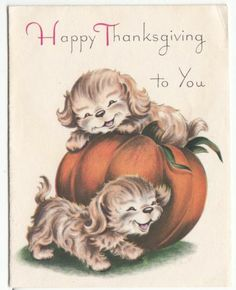 Vintage Norcross Puppies Playing on Pumpkin Thanksgiving Greeting Card